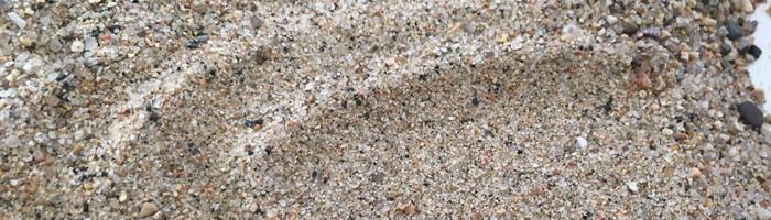 Fine Sand (Unwashed)